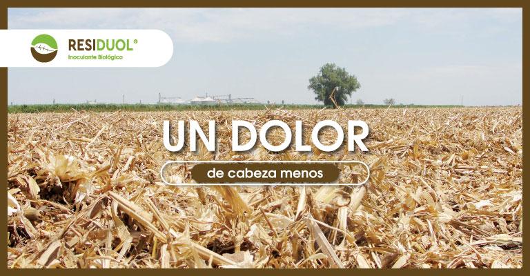 Biocultivos_Residuol
