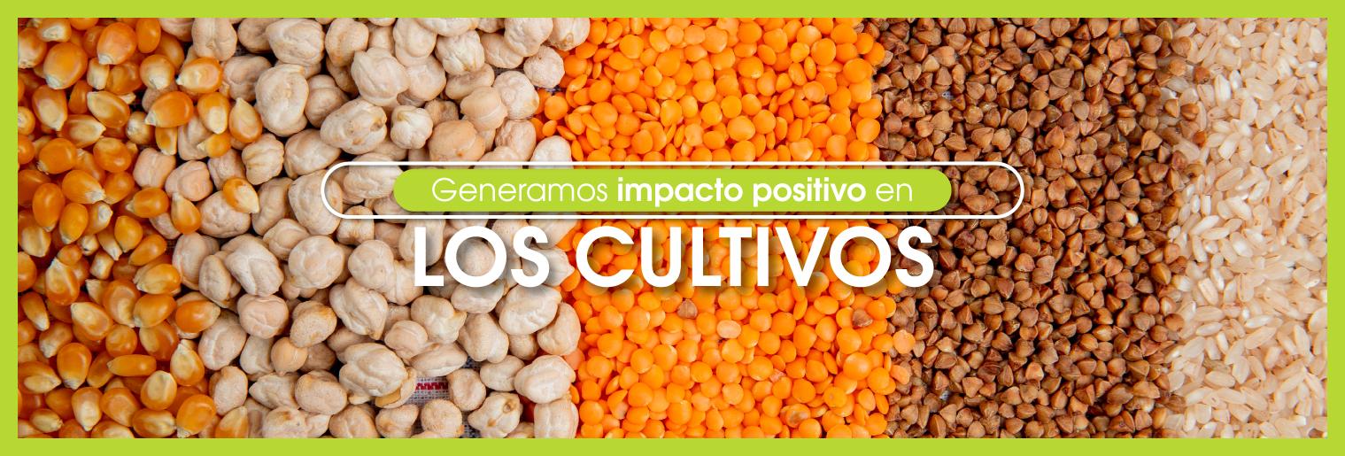 Biocultivos_Cultivos